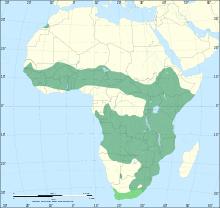 220px-Serval_range_IUCN.svg