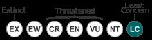 Status_iucn3.1_LC.svg (7)