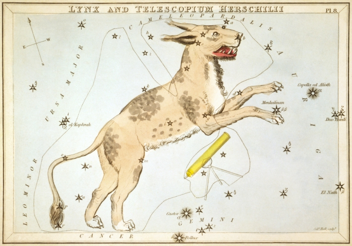 Sidney_Hall_-_Urania's_Mirror_-_Lynx_and_Telescopium_Herschilii